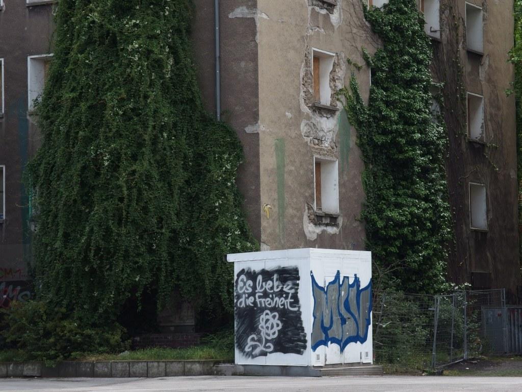 FWD [Antiziganismus]: Graffito, Hochfeld, Juni 2014